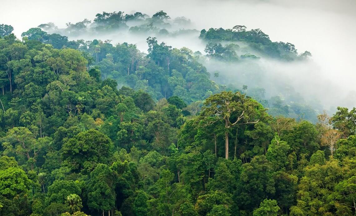 Anvitar Gartenmobel Tropenholz Pflege