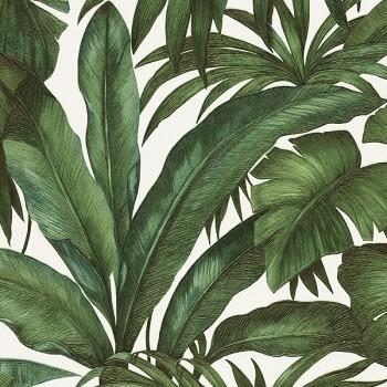 Umwelt und Tropenholz